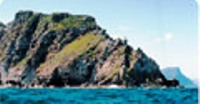 Simon's Town Boat Charters and Cruises