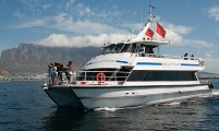 Luxury Catamaran Boat Charter Functions Cape Town