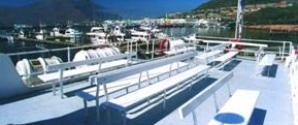 Hout Bay Boat Charter Cruises Cape Town