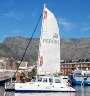 Hout Bay Boat Charter Cruises Functions Cape.