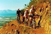 Tours Day Trips from Cape Town